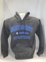 Basketball Hooded Sweatshirt Center Chest New Logo