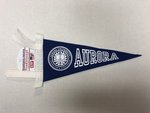 Pennant-Royal w/ white letters-*Seal* Aurora (small) 4 x 9