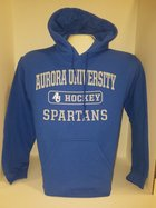 Hockey Hooded Sweatshirt Center Chest New Logo