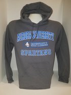 Softball Hooded Sweatshirt Center Chest New Logo